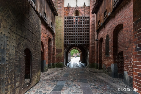 Castello di Malbork