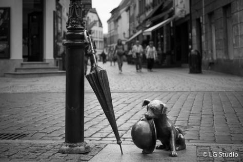 La statua del cagnolino Filus.