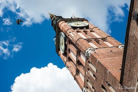 Torre del Palazzo Municipale.