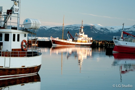 Porto di Husavik Iceland
